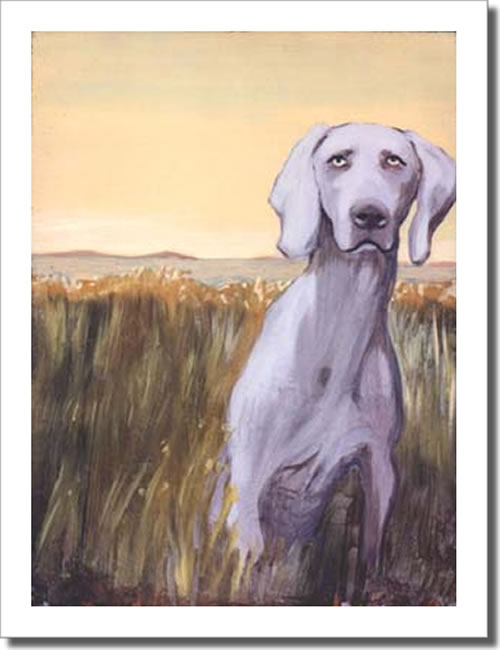 Weimaraner in the Field